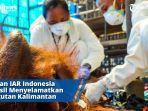 pemeriksaan-medis-kondisi-fisik-dan-laboratorium-untuk-orangutan.jpg