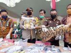 pemusnahan-barang-bukti-kulit-harimau-di-pelalawan.jpg