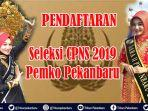 pendaftaran-seleksi-cpns-2019-pemko-pekanbaru-belasan-pelamar-terpantau-daftar-via-sscasnbkngoid.jpg