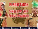 pendaftaran-seleksi-cpns-2019-pemko-pekanbaru-kepala-bkpsdm-pastikan-lancar-segini-pendaftarnya.jpg