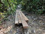 peserta_jungle_trek_rimbang_baling_kampar_riau_kecewa_saat_temukan_tumpukan_kayu_diduga_hasil_ilog.jpg