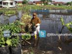 petani-menyelamatkan-tanamannya-2_20151201_152313.jpg