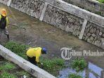 petugas_kebersihan_dinas_pu_pekanbaru_pasukan_kuning_bersihkan_saluran_air_1.jpg