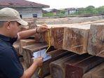 polres_meranti_riau_ungkap_791_batang_kayu_diduga_hasil_illegal_logging_2.jpg