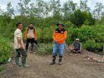 pria-77-tahun-hilang-di-hutan-saat-mencari-kayu-bakar-bpbd-kepulauan-meranti-lakukan-pencarian.jpg