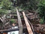 seratusan-keping-kayu-olahan-hasil-aktifitas-ilegal-logging-di-cagar-biosfer-giam-siak-kecil_20170227_213218.jpg