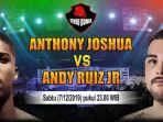 tinju-dunia-anthony-jushua-vs-andy-ruiz-jr.jpg