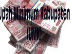 upah-minimum-kabupaten-umk_20181028_222502.jpg