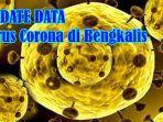 update-data-kasus-virus-corona-di-bengkalis-ada-2-tambahan-pdp-dan-96-odp-covid-19.jpg