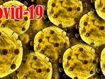 update-virus-corona-di-siak-odp-covid-19-capai-392-orang-bupati-siak-sediakan-dana-rp-289-miliar.jpg