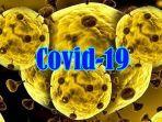 virus-corona-covid-19.jpg