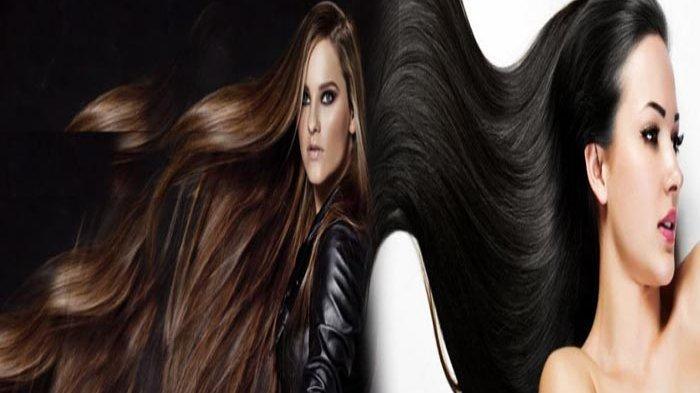 10 Cara Alami Bikin Rambut Panjang Tebal Mengubah Anda Jadi Rapunzel Tribun Pontianak