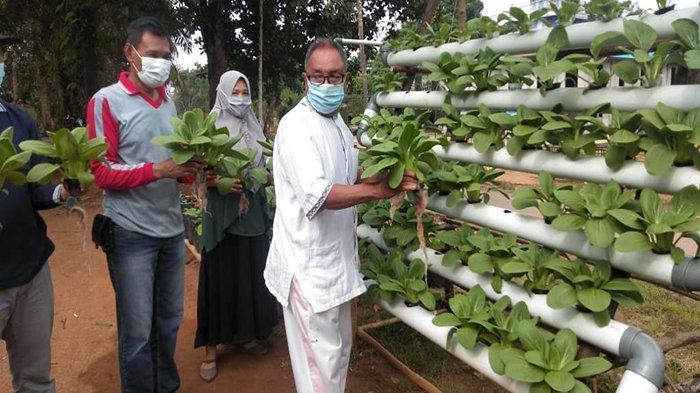 Komitmen Minamas Plantation Dalam Mencegah Karhutla Hingga Mewujudkan Kemandirian Desa Di Kalbar - 12gas.jpg