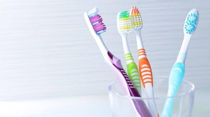 Cara Menyimpan dan Merawat Sikat Gigi, Waspada Bakteri Bersarang Sebabkan Diare dan Radang