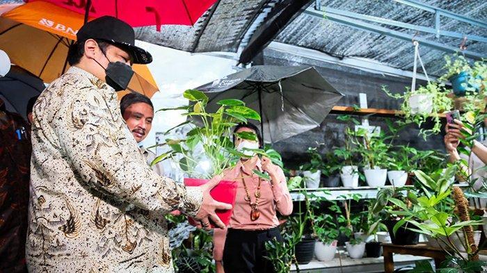 Menko Airlangga Dukung Penuh Ekspor Program Florikultura dan Benih Sayuran