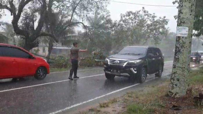 Halangi Jalan, Anggota Sat Lantas Polres Mempawah Pindahkan Pohon Tumbang Saat Hujan