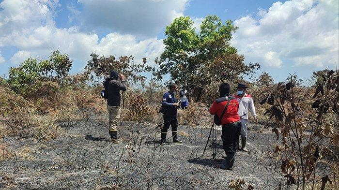 Cuaca Panas, BPBD Sebut Singkawang Berpotensi Karhutla, Manggala Agni Temukan Satu Hotspot