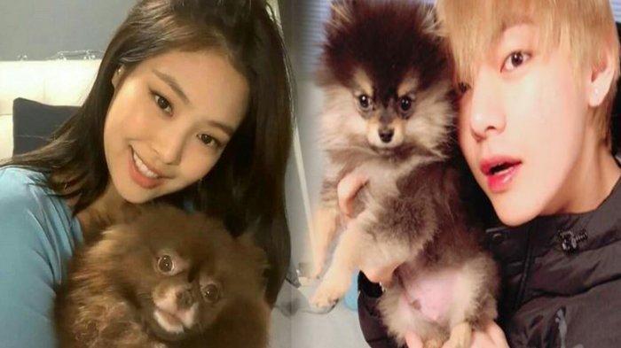 8 Potret Menggemaskan Idola K-Pop dengan Anjing Kesayangan, Imutnya V BTS hingga Jennie BLACKPINK