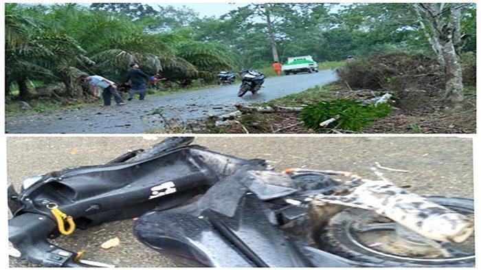 Ibu Muda Meninggal Dunia Usai Tabrak Pohon Tumbang di Jalan Raya Serimbu - Ngabang