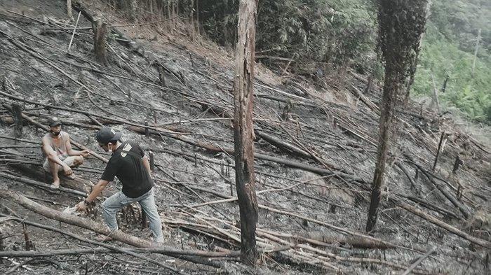 Warga Desa Tunggul Boyok Kabupaten Sanggau Ditemukan Meninggal Dunia Terbakar