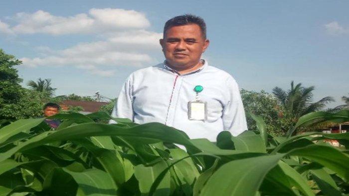 Mengenal Agus Suryanto, Dekan Fakultas Pertanian UPB Pontianak