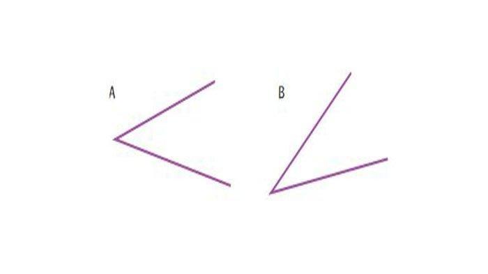 Apakah besar sudut gambar berikut sama besar? Jelaskan!
