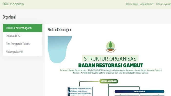 Badan Restorasi Gambut (BRG) dan 17 Lembaga Lain Bakal Dibubarkan, Termasuk Bentukan Era Megawati
