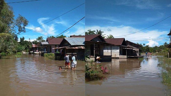 BREAKING NEWS - Banjir Terjang Desa Bukit Segoler Sambas Kalbar, Permukiman Warga Tergenang