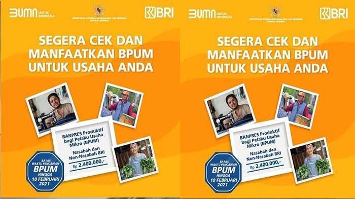 E-Form Bri Co Id Umkm 2021 : Link E-Form BRI, Cek Penerima ...