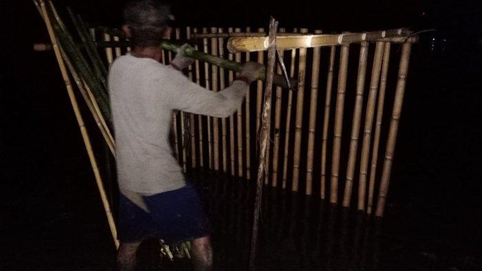 Kelompok Binaan Yayasan Palung Tanam Mangrove yang Difasilitasi oleh BPDASHL