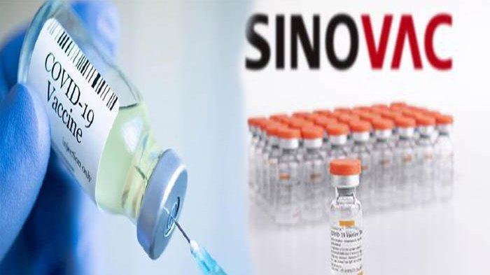 BENARKAH Antibodi Vaksin Sinovac Turun 6 Bulan Pasca Disuntik? WHO Beberkan Kebenarannya