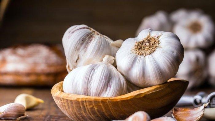BISA Racuni Organ Lain Hingga Rusak Ginjal, Peneliti Jelaskan Bahaya Makan Bawang Putih Seperti Ini