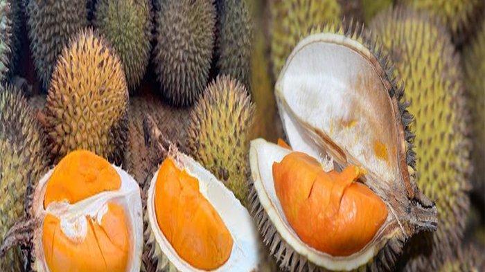 BUAH Lai Mirip Durian, Berapa Harga Buah Lai dan Manfaat Buah Lai untuk Kesehatan?