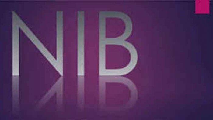 Cara Buat NIB Online Pelaku Usaha Login oss.go.id Cek Syarat dan Tahapannya