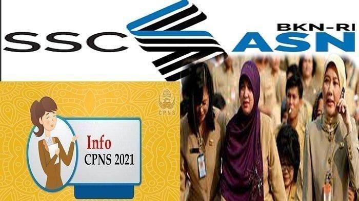 CARA Cek Jumlah Pesaing CPNS 2021 & Cek Jumlah Pelamar CPNS 2021 Hari Ini
