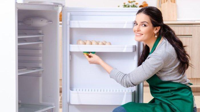 Cara Membersihkan Kulkas - Idealnya Kulkas Harus Dibersihkan Menyeluruh Setiap 4 Bulan Sekali