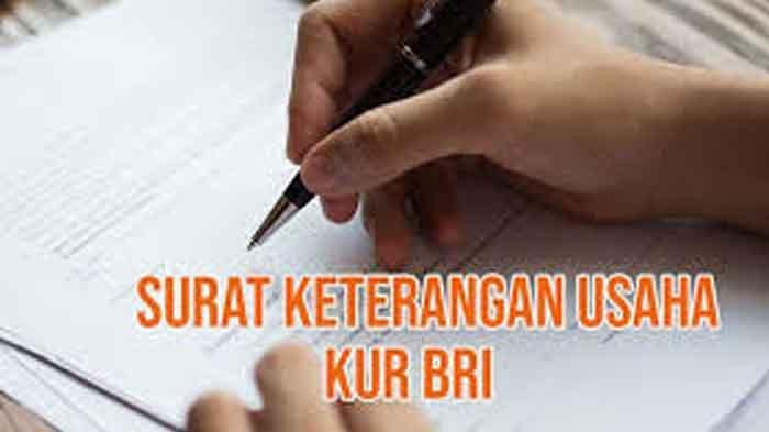 Link Download Surat Keterangan Usaha KUR BRI Co Id Daftar Online Login https://kur.bri.co.id