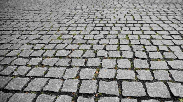 Cara Menghilangkan Lumut di Halaman Rumah yang Terbuat dari Paving Block
