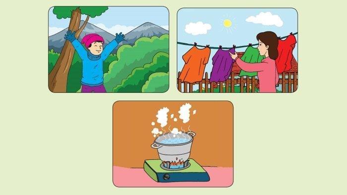 Kunci Jawaban Halaman 3 4 6 7 8 9 Tema 6 Kelas 5 Subtema 1 Pembelajaran 1 Suhu Dan Kalor Tribun Pontianak