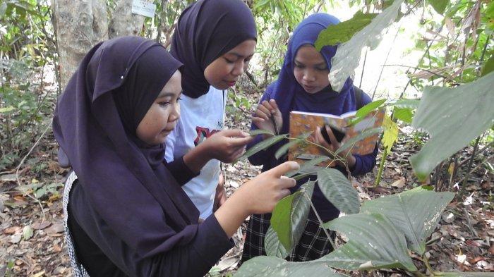 Mengintip Aktivitas Relawan REBONK Belajar Morfologi Tumbuhan di Yayasan Palung Kayong Utara