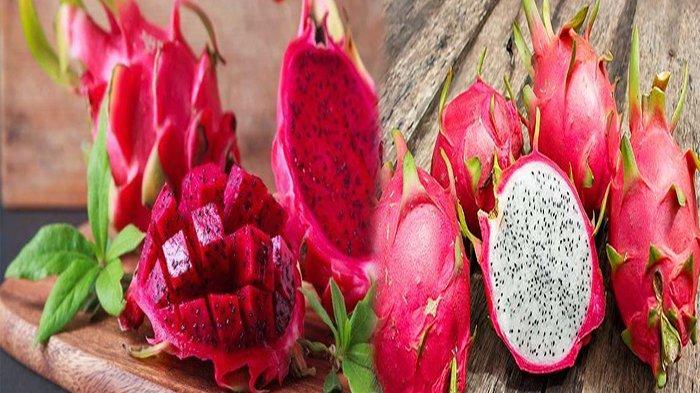 Ilustrasi gambar buah naga merah dan putih.