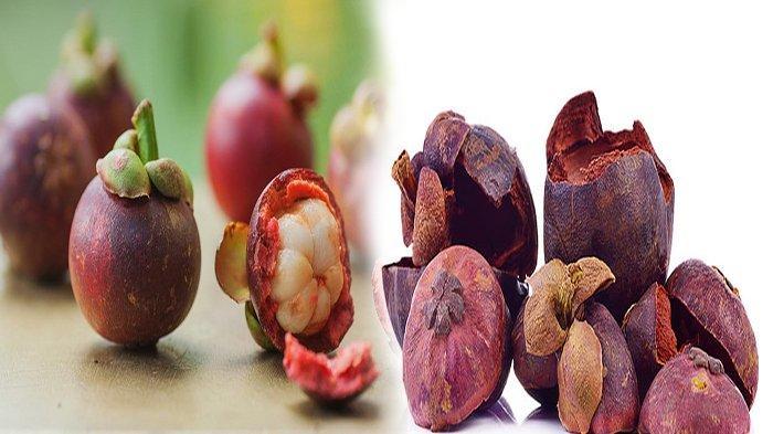 DERETAN MANFAAT Terbesar Dari Kulit Manggis, Diantaranya Meningkatkan Imunitas Tubuh