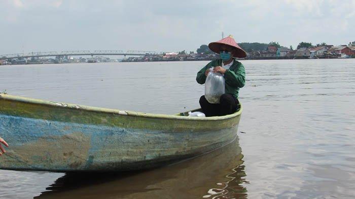 Peringati Hari Lingkungan Hidup Sedunia, Wako Pontianak Tebarkan 1000 Bibit Ikan di Sungai Kapuas