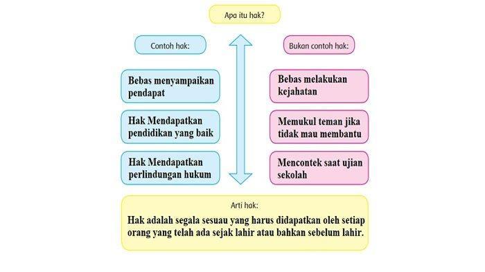 Diagram apa itu hak.