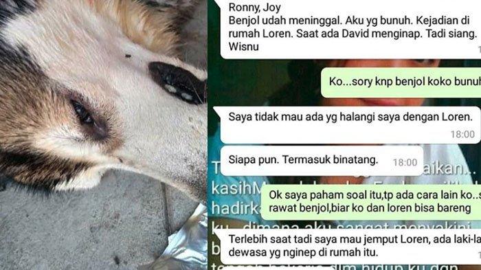 Bermula Kisah Asmara yang Rumit, Anjing Ini Dibunuh dan Tewas Mengerikan