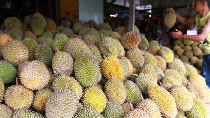 Kamu Penikmat Durian? Inilah 5 Kriteria Durian Berkualitas Menurut Pakarnya