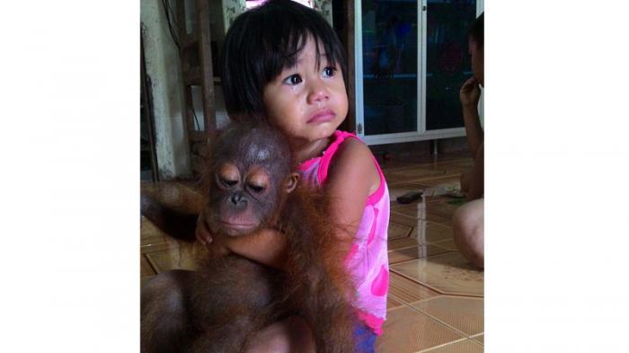 Kisah Persahabatan Ely dengan Anak Orangutan, Minum Susu Merek yang Sama