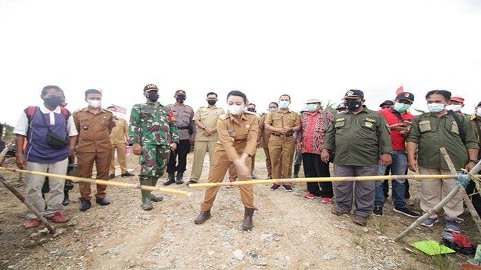Bupati Landak Karolin Margret Natasa Tanam Perdana Jagung Desa Amboyo Inti