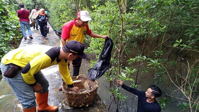 Gepami Kalbar Lakukan Giat Hijau dan Bersih untuk Bumi di Kawasan Hutan Mangrove