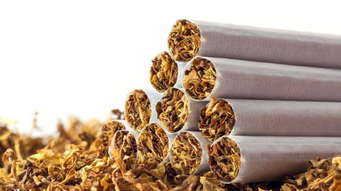HARGA Rokok Hari Ini 1 Februai 2021, Update Harga Rokok Terbaru 2021 Setelah Bea Cukai Rokok Naik